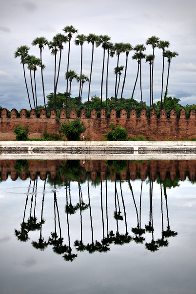 Mandalay Palace Palms